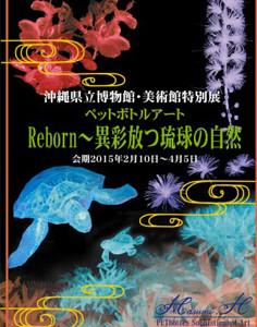 ペットボトルアート Reborn〜異彩放つ琉球の自然〜